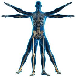 back pain massage, massage therapist